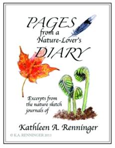 Kathleen Renniger Book