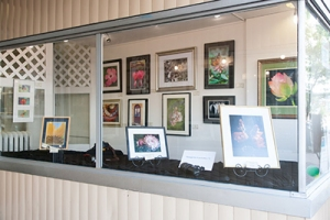 Gallery74RWindow