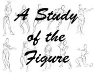 StudyoftheFigure300